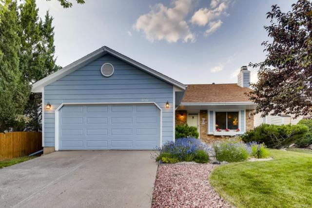 8703 W Star Drive, Littleton, CO 80128 (#6184961) :: The Heyl Group at Keller Williams