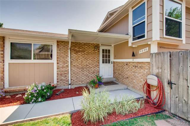 9230 W 104th Place, Westminster, CO 80021 (#6190769) :: The DeGrood Team