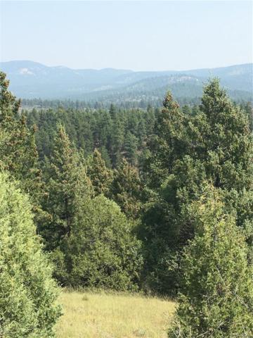 4 (TBD) Half Peak Trail, Pine, CO 80470 (#6190963) :: Hometrackr Denver