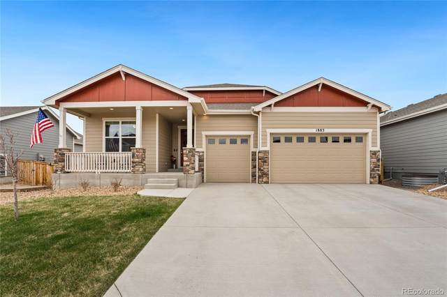 1883 Vista Plaza Street, Severance, CO 80550 (#6193932) :: My Home Team