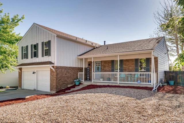 4760 S Wright Way, Morrison, CO 80465 (#6198582) :: Berkshire Hathaway Elevated Living Real Estate