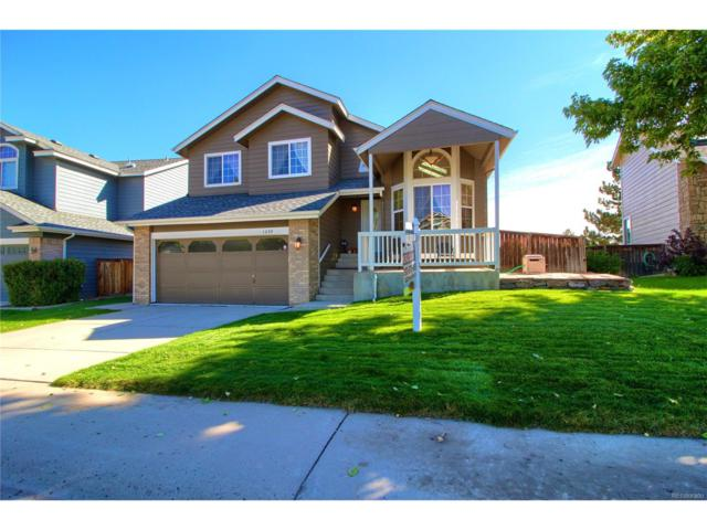 1230 Ascot Avenue, Highlands Ranch, CO 80126 (#6199334) :: The Peak Properties Group