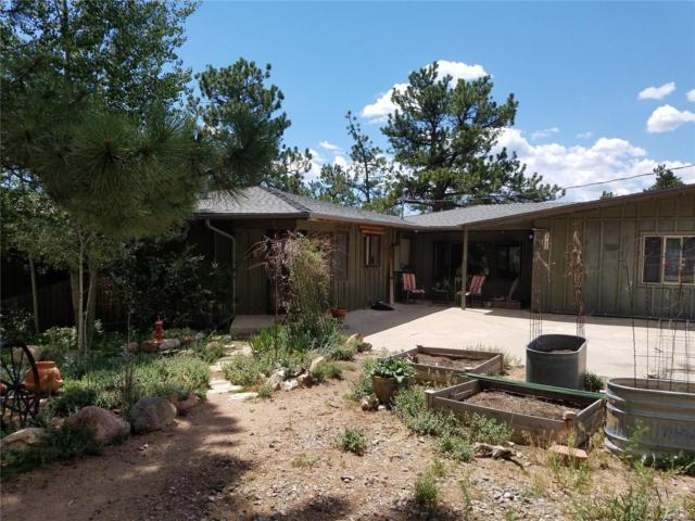 2006 Roland Drive, Bailey, CO 80421 (MLS #6200338) :: 8z Real Estate