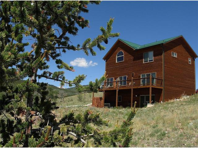 2977 High Creek Road, Fairplay, CO 80440 (MLS #6200390) :: 8z Real Estate