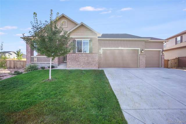 1323 Sidewinder Circle, Castle Rock, CO 80108 (#6201654) :: The Gilbert Group