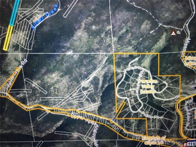 0 Silver Creek Road, Black Hawk, CO 80422 (#6201745) :: Wisdom Real Estate