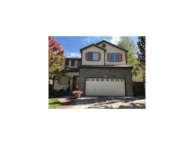 10565 Tracewood Circle, Highlands Ranch, CO 80130 (#6203333) :: The Galo Garrido Group