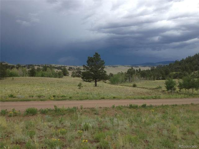 000 Sequin Road, Hartsel, CO 80449 (#6204064) :: The Gilbert Group