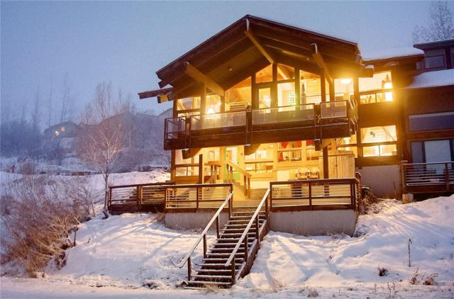 31575 Buckingham Lane, Steamboat Springs, CO 80487 (#6205037) :: The Healey Group