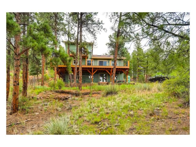16626 Ouray Rd W, Pine, CO 80470 (MLS #6205521) :: 8z Real Estate