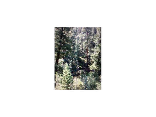 0 TBD Upper Bear Creek Rd, Evergreen, CO 80439 (MLS #6206688) :: 8z Real Estate