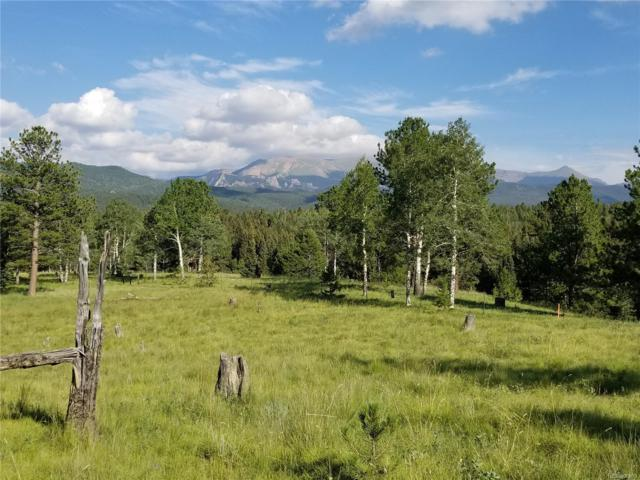 TBD1 Highway 67, Divide, CO 80814 (#6211292) :: Compass Colorado Realty