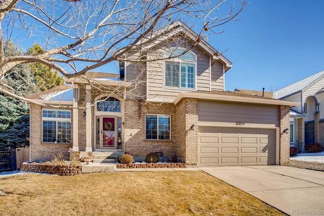 10014 Armadillo Drive, Lone Tree, CO 80124 (#6214393) :: The Margolis Team