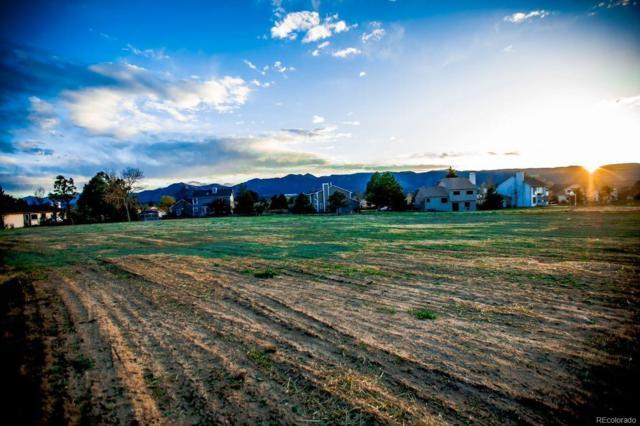 14112 Stone Eagle Place, Colorado Springs, CO 80921 (#6214645) :: James Crocker Team
