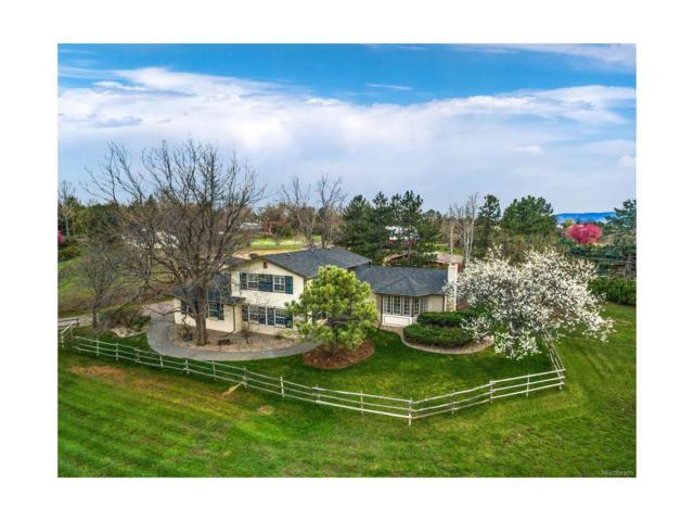 365 Rangeview Drive, Littleton, CO 80120 (MLS #6215309) :: 8z Real Estate