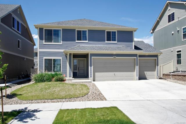 19105 Robins Drive, Denver, CO 80249 (#6216028) :: The HomeSmiths Team - Keller Williams