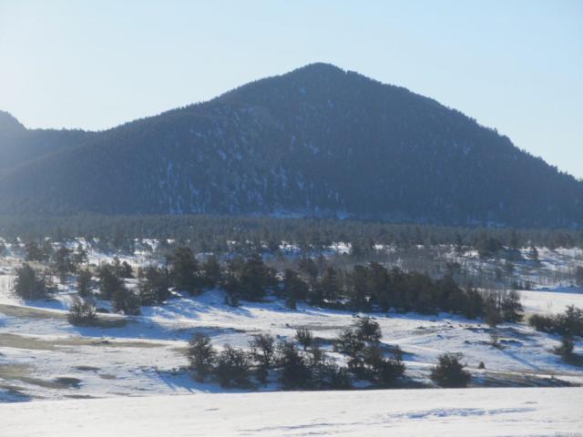 699 Jasper Way, Hartsel, CO 80449 (#6216417) :: Mile High Luxury Real Estate