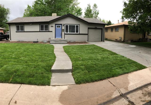 3007 S Zenobia Street, Denver, CO 80236 (#6217275) :: The Pete Cook Home Group