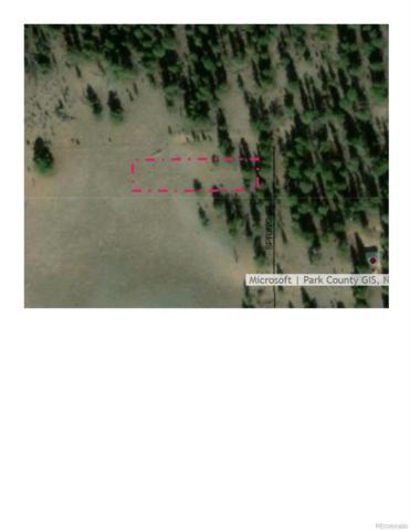 Birch Street, Hartsel, CO 80449 (MLS #6220822) :: 8z Real Estate