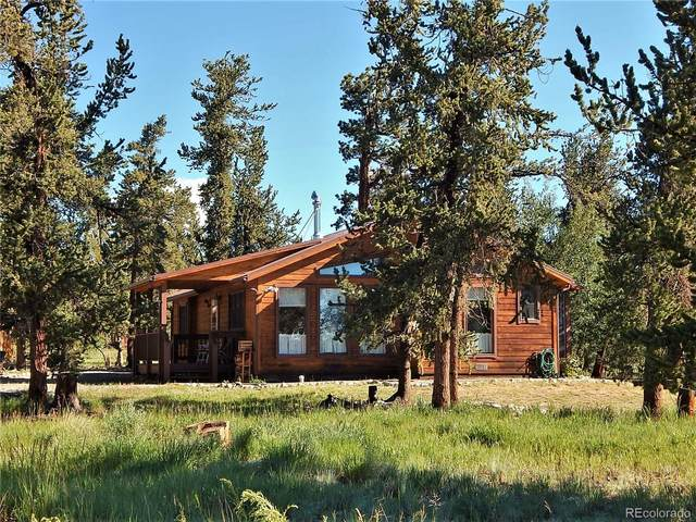 1721 Mullenville Road, Fairplay, CO 80440 (#6221154) :: Berkshire Hathaway HomeServices Innovative Real Estate