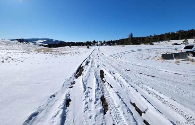 11 Olander Trail, Guffey, CO 80820 (#6226816) :: The Dixon Group