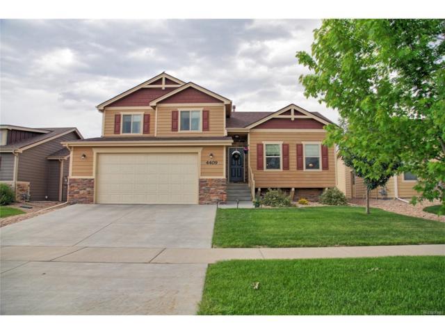 4409 Dante Street, Evans, CO 80620 (MLS #6227010) :: 8z Real Estate