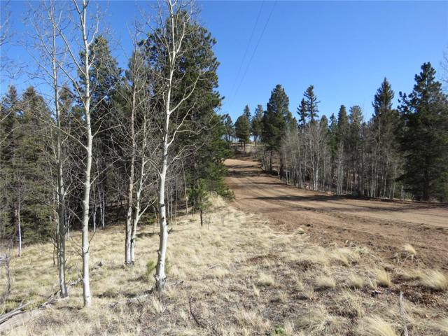 35 Greenhorn Trail, Florissant, CO 80816 (#6227778) :: My Home Team