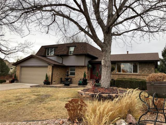 5906 S Birch Way, Centennial, CO 80121 (#6229439) :: The Heyl Group at Keller Williams