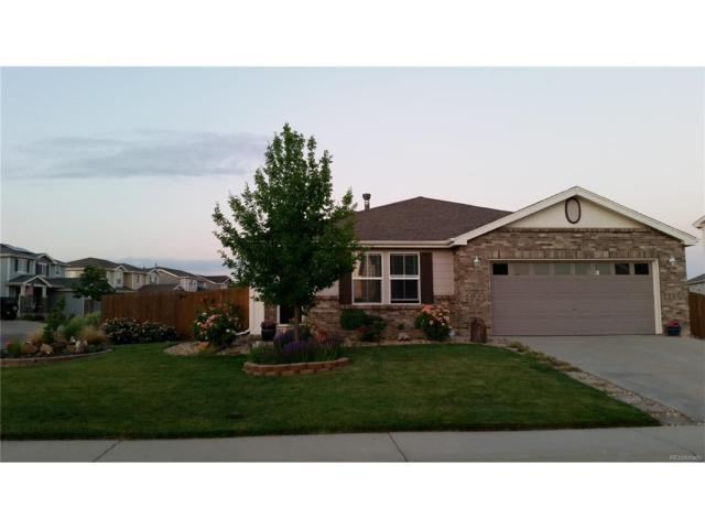 13696 Krameria Way, Thornton, CO 80602 (#6230488) :: The Griffith Home Team