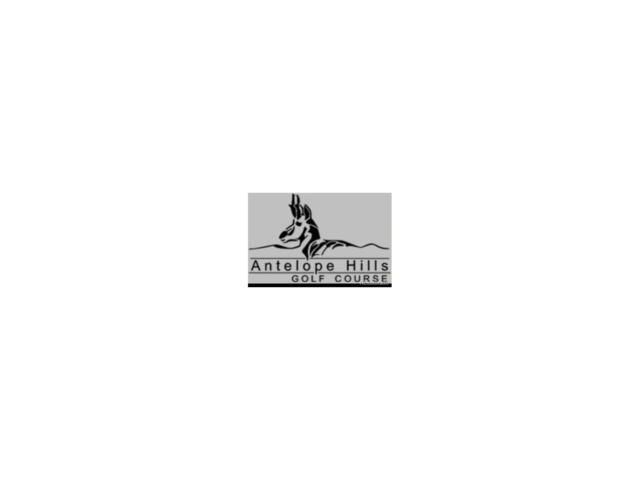 527 Antelope Drive, Bennett, CO 80102 (MLS #6231291) :: 8z Real Estate