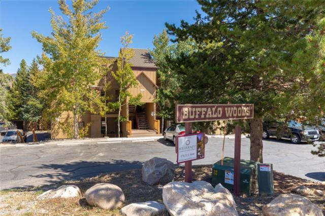 21 Buffalo Drive #210, Silverthorne, CO 80498 (#6231719) :: The Griffith Home Team