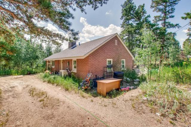 33 Severance Lodge Road, Black Hawk, CO 80422 (#6233442) :: Bring Home Denver with Keller Williams Downtown Realty LLC
