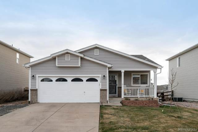 7732 Brown Bear Way, Littleton, CO 80125 (MLS #6235176) :: The Sam Biller Home Team