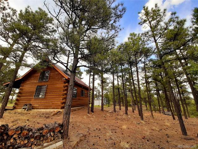22270 S Ridgeline Drive, Trinidad, CO 81082 (MLS #6235369) :: 8z Real Estate