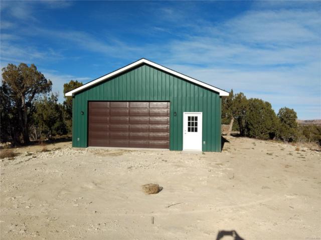 3645 Black Horse Drive, Pueblo, CO 81004 (#6236093) :: The Peak Properties Group