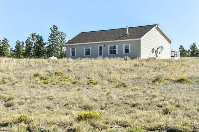 510 Windmill Drive, Buena Vista, CO 81211 (#6236685) :: Compass Colorado Realty