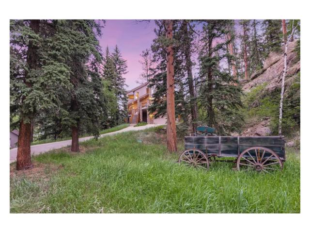 12562 S Elk Creek Road, Pine, CO 80470 (MLS #6239336) :: 8z Real Estate
