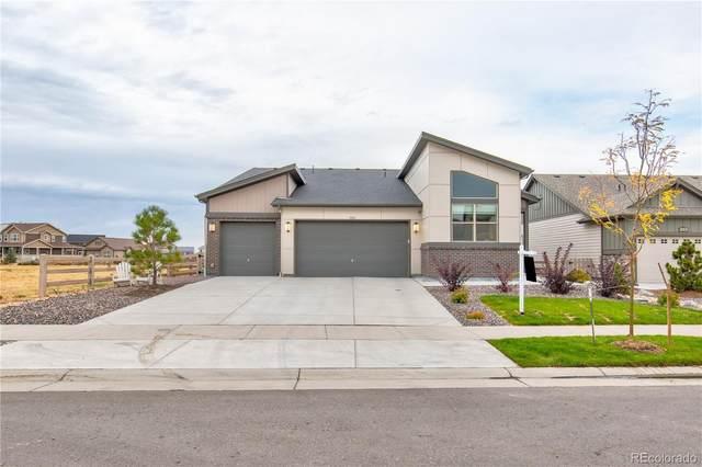 7955 Blue River Avenue, Littleton, CO 80125 (#6241807) :: Compass Colorado Realty