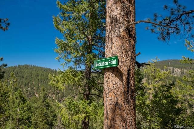 14433B Elk Creek Road, Pine, CO 80470 (#6243288) :: Kimberly Austin Properties