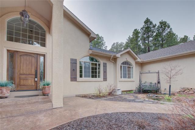 11305 Laforet Point, Colorado Springs, CO 80908 (#6244341) :: The HomeSmiths Team - Keller Williams