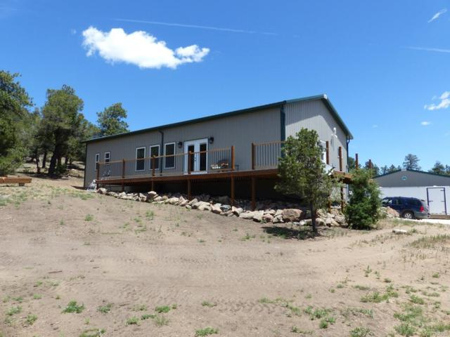 7701 County Road 255, Westcliffe, CO 81252 (#6244413) :: The Heyl Group at Keller Williams