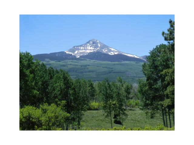 44ZS Lone Cone Road, Norwood, CO 81423 (MLS #6244754) :: 8z Real Estate