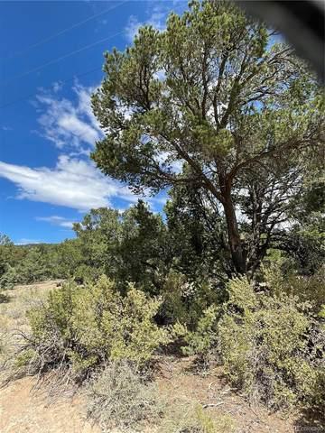 317 Elk Ridge Trail, South Fork, CO 81154 (MLS #6245383) :: Wheelhouse Realty