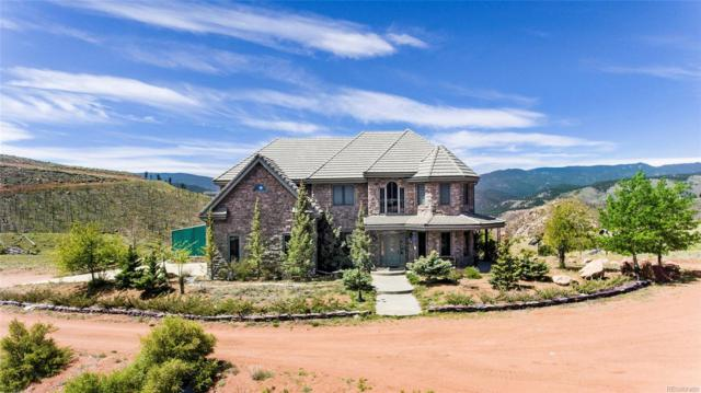 30633 Ute Road, Pine, CO 80470 (#6245510) :: The Galo Garrido Group