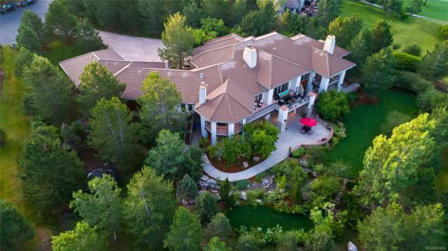 755 Belfry Court, Castle Rock, CO 80108 (#6246450) :: Colorado Team Real Estate