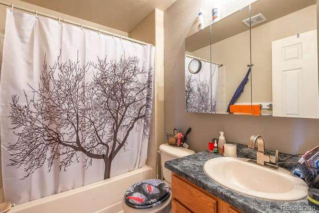 3405 Leopard Place, Loveland, CO 80537 (#6246725) :: The Griffith Home Team
