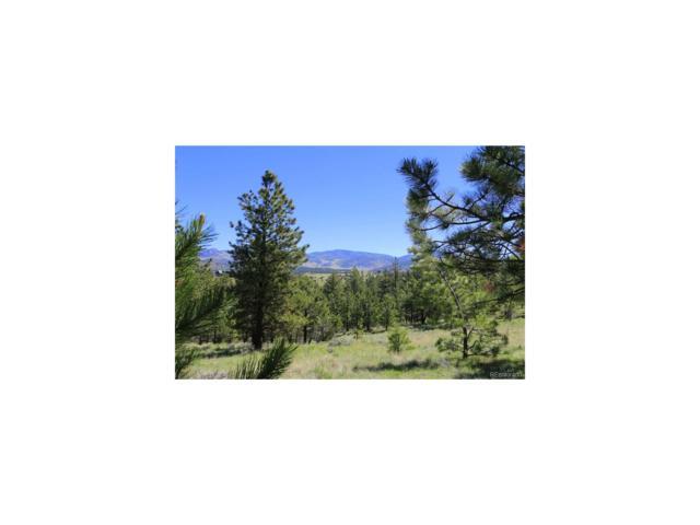 511 Crystal Falls Drive, Westcliffe, CO 81252 (MLS #6246781) :: 8z Real Estate