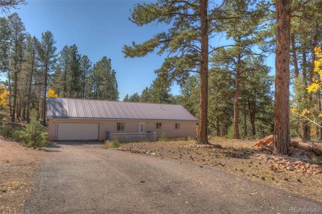 40 Oregon Circle, Florissant, CO 80816 (MLS #6247149) :: 8z Real Estate