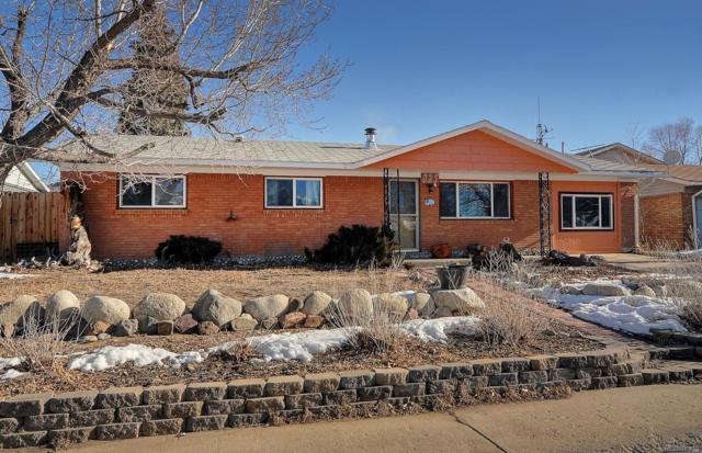 825 S Gunnison Avenue, Buena Vista, CO 81211 (#6247280) :: The City and Mountains Group
