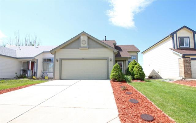 241 Turf Trail Place, Fountain, CO 80817 (#6248440) :: The Heyl Group at Keller Williams